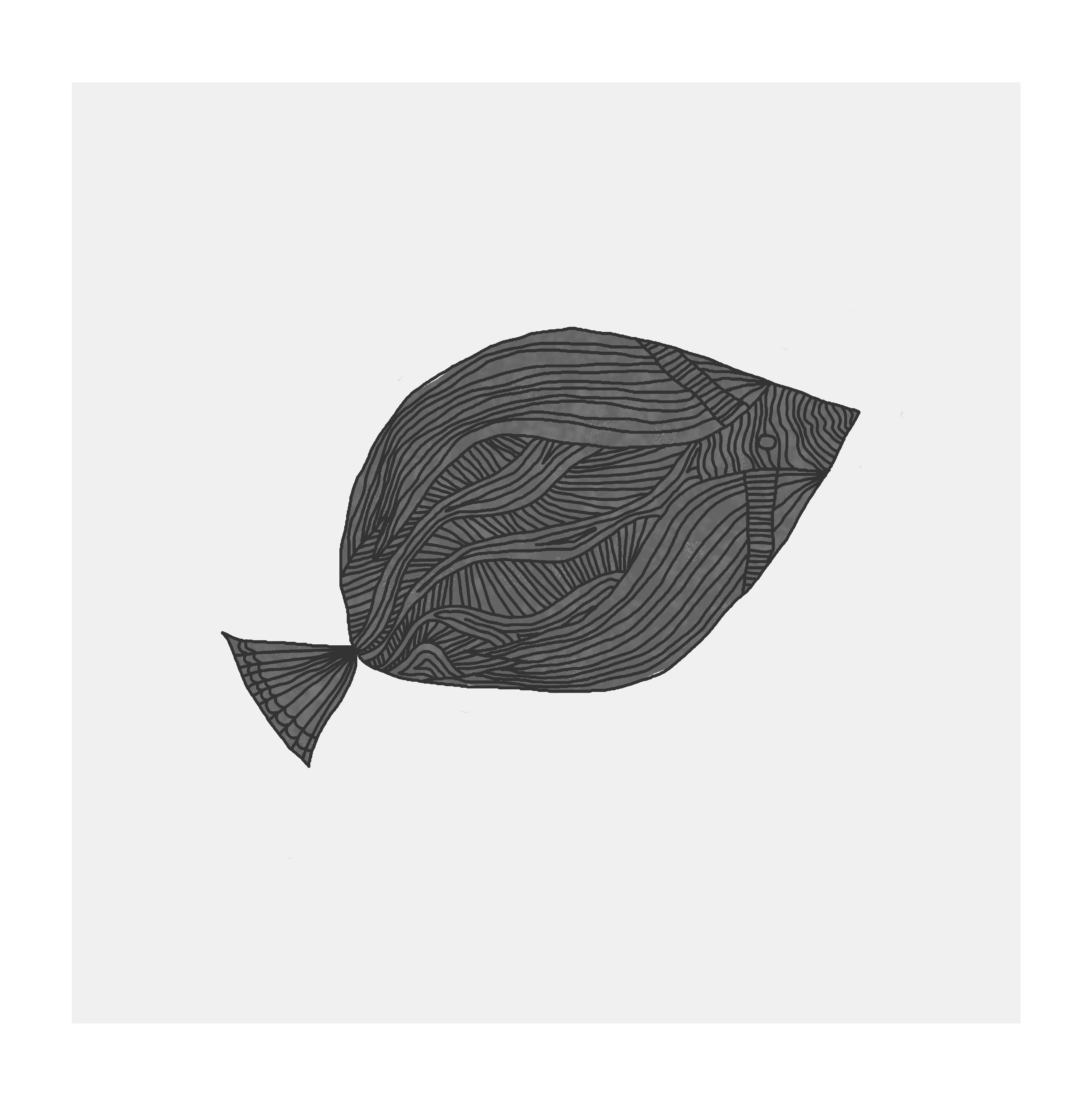 fisk_4